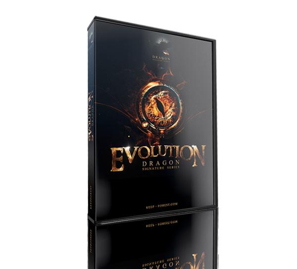 Evolution Dragon by Keepforest