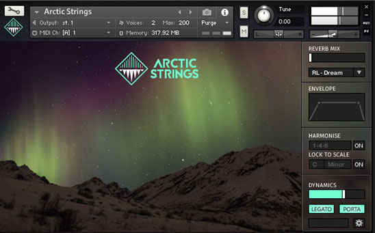 arctic strings interface