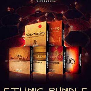ethnic instruments bundle