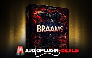 braams vol 2