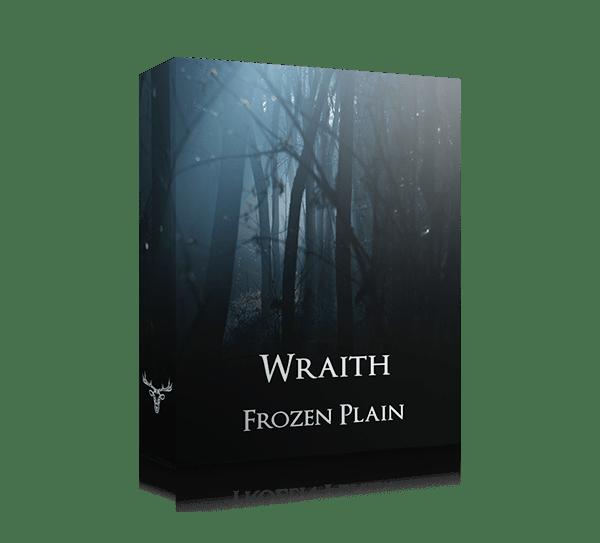 Wraith by Frozen Plain