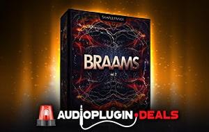 BRAAMS VOL. 2